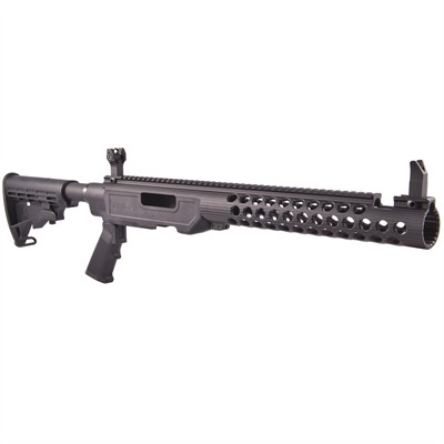 Click here to buy Ruger 10/22 Sport Stock Chassis by Troy Industries, Inc..