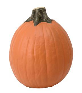 Fun Kins Carvable Pumpkin Taraminski Orange                      Fun Kins Carvable Pumpkin Taraminski Orange by Fun Kins