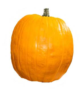 Fun Kins Carvable Pumpkin Natiello Orange                      Fun Kins Carvable Pumpkin Natiello Orange by Fun Kins